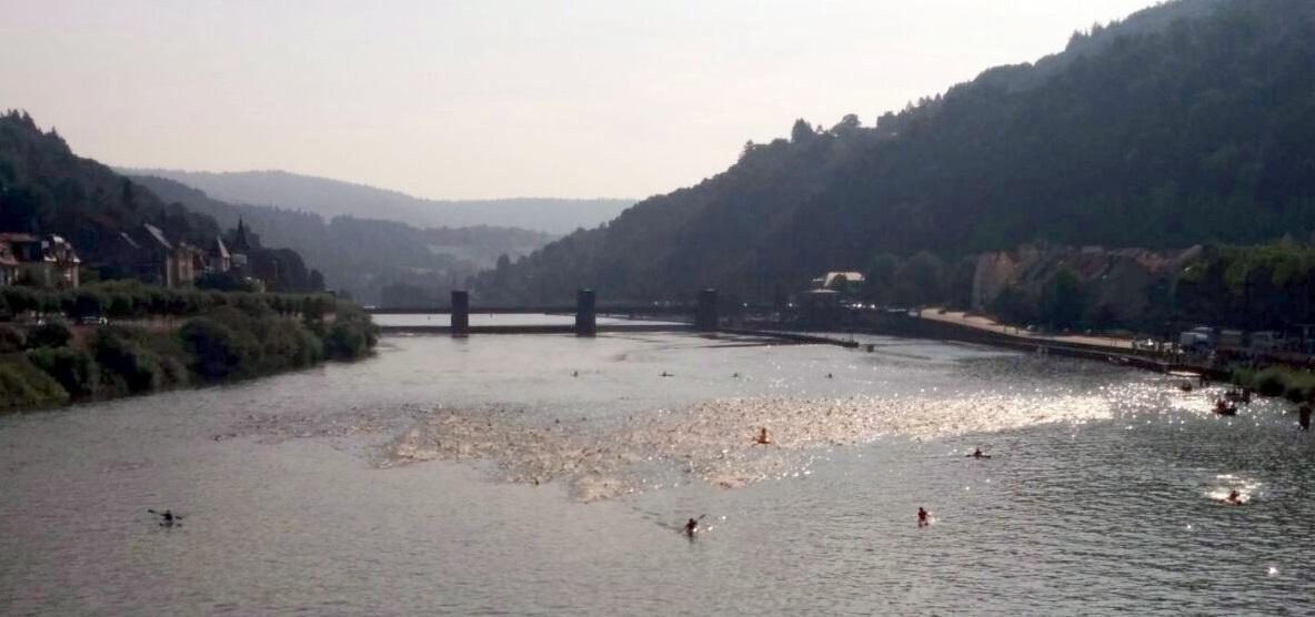 Heidelbergman 2014 Schwimmen